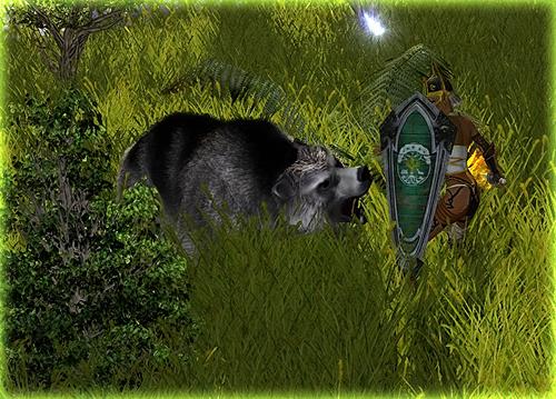 https://www.sacred-legends.de/media/content/Grizzly-500.jpg